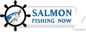Salmon Fishing Now!